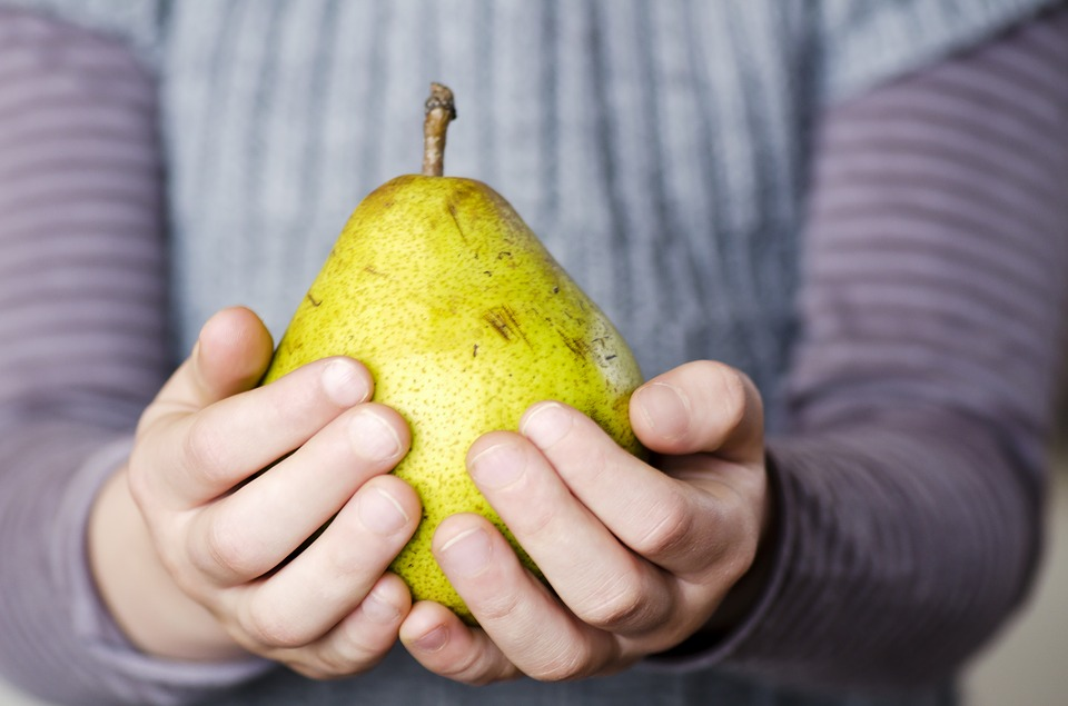 pear-1318107_960_720