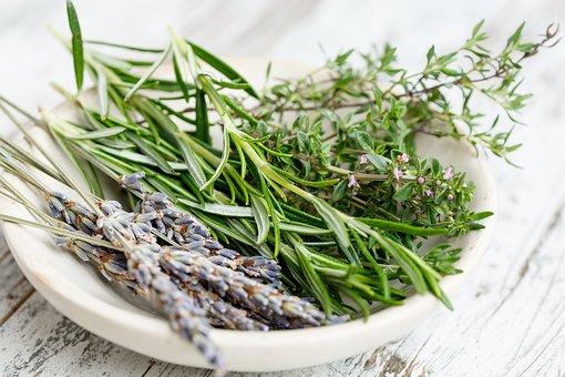 Beneficios y propiedades del tomillo